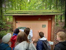 SchülerInnen erreichen Station 10 beim Waldquiz-Wandertag